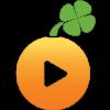 Lucky Orange alternatifi
