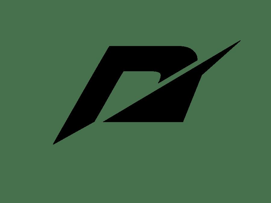 Download Accelerator Plus alternatifi