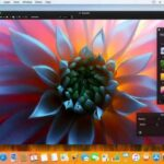 pixelmator alternatifi