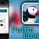 puffin alternatifi