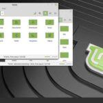 linux mint alternatifi